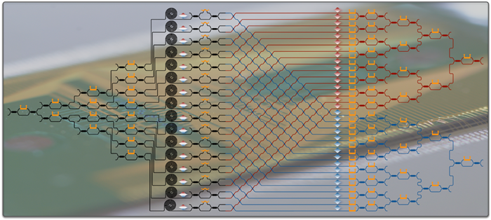 A large-scale integrated silicon-photonic quantum circuit for multidimensional entanglement.